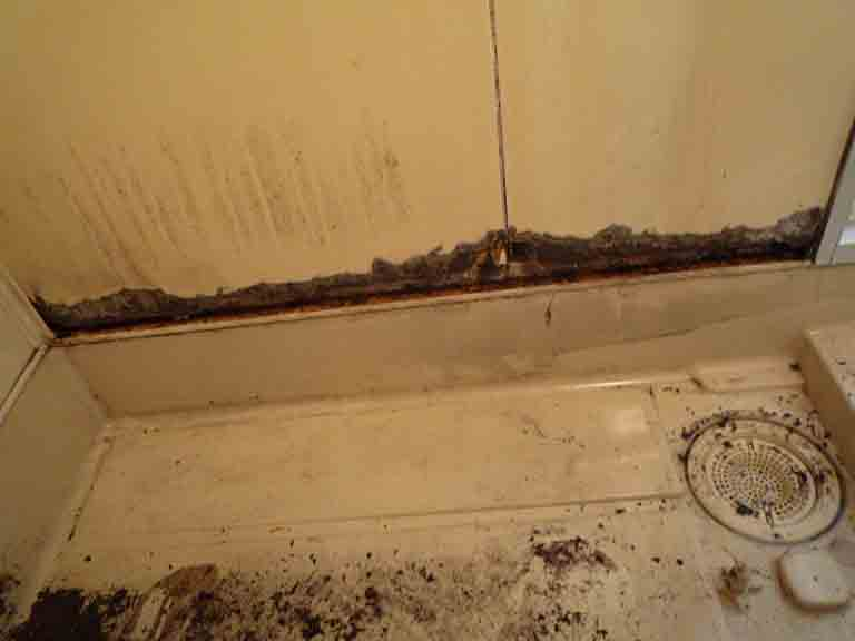 塩ビシートを削ぎ落とした壁